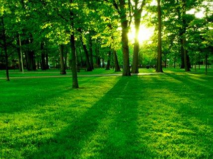 EnergiekLeiden werkt met partners aan Green deal